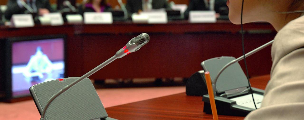 Экстремальная работа: переводчики из 33 стран обсудили в СПбГУ теорию и практику перевода